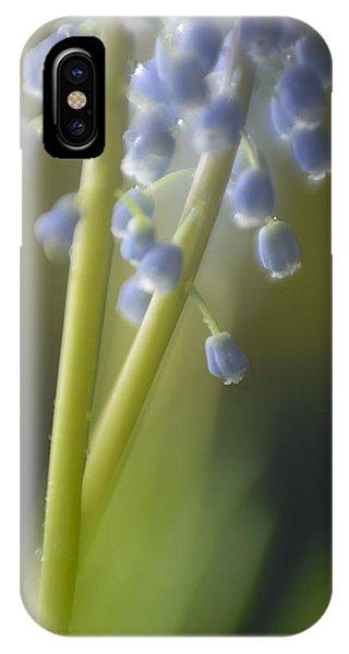 Muscari Phone Case by Silke Magino