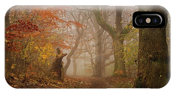 Woods iPhone Case - My Autumn Walk by Leif L??ndal