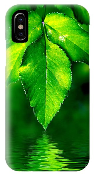 Natural Leaves Background IPhone Case