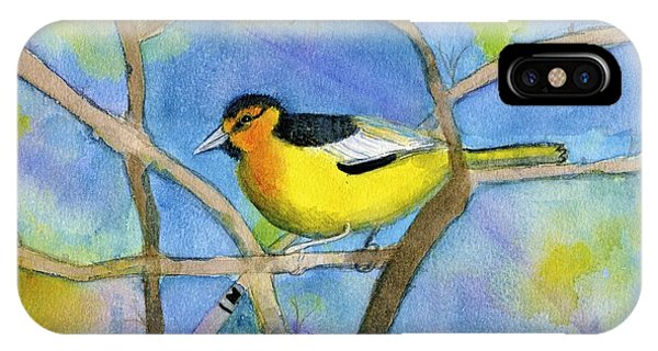 Northern Oriole IPhone Case
