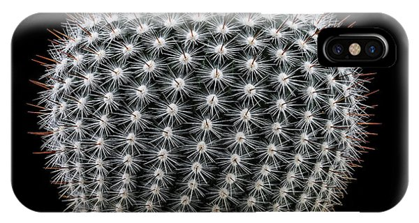 Fort iPhone Case - Notocactus Scopa by Victor Mozqueda
