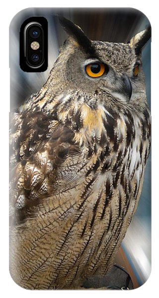 IPhone Case featuring the photograph Owl Alba Spain  by Colette V Hera  Guggenheim