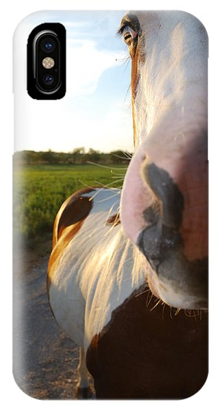 Paint Mare IPhone Case