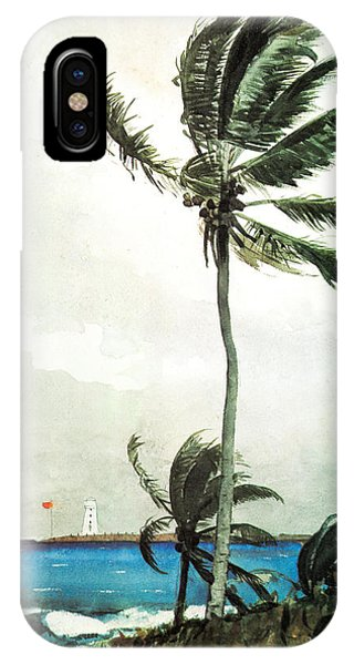 IPhone Case featuring the painting Palm Tree Nassau by Celestial Images