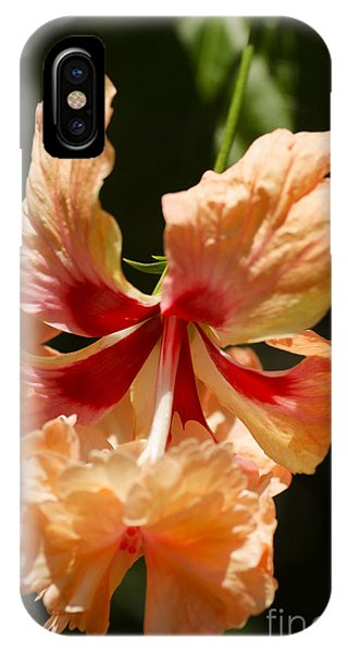 Peach And Red Flower IPhone Case