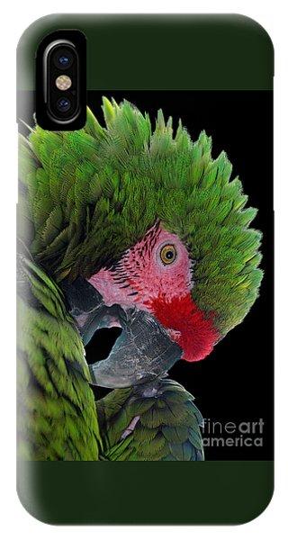 Pensive Parrot IPhone Case