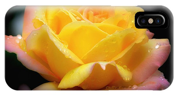 Petals And Drops IPhone Case