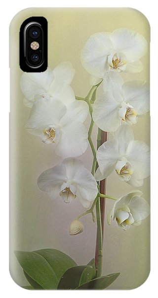 Phalaenopsis Phone Case by Carol Erikson