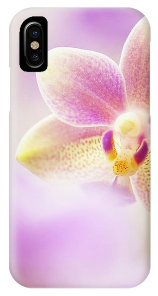 Phalaenopsis Tzu Chiang Balm 'ot0076' Orchid Phone Case by Maria Mosolova/science Photo Library