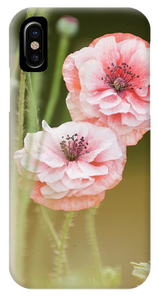 Cultivar iPhone Case - Pink Double Shirley Poppies by Maria Mosolova