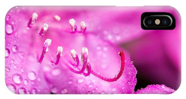 Pink Dreams IPhone Case