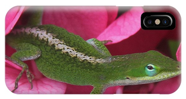 Pink Hydrangea And Lizard 2 IPhone Case