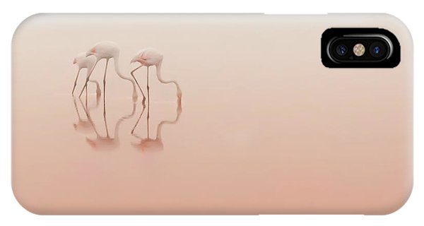 Morning iPhone Case - Pink Silence... by Natalia Rublina