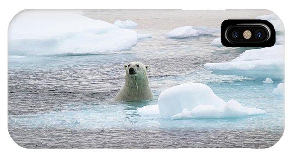 Polar Bear Phone Case by John Devries/science Photo Library