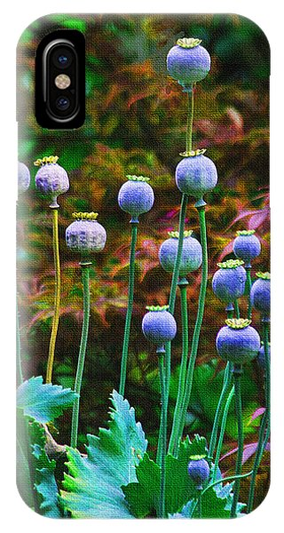 Poppy Seed Pods IPhone Case