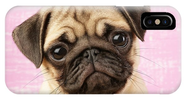 Pug iPhone X Case - Pug Portrait by MGL Meiklejohn Graphics Licensing
