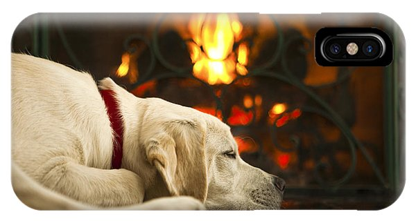 Yellow Lab iPhone Case - Puppy Sleeping By The Fireplace by Diane Diederich