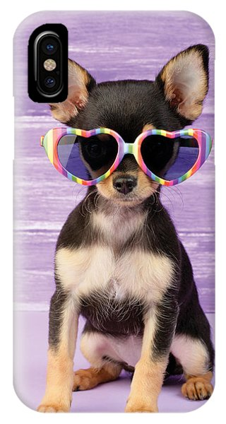 Chihuahua iPhone Case - Rainbow Sunglasses by MGL Meiklejohn Graphics Licensing
