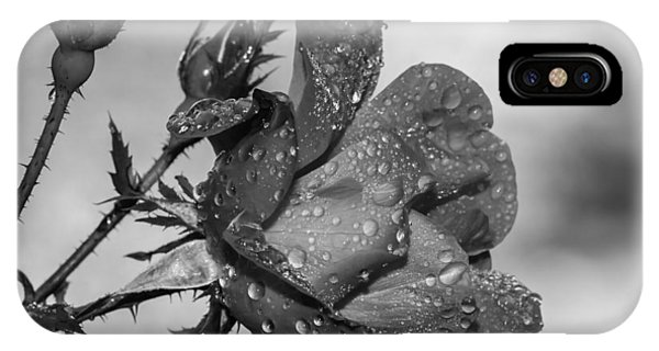 Raindrop Rose Close-up Phone Case by Charles Feagans