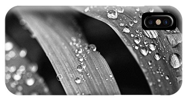 Grass iPhone Case - Raindrops On Grass Blades by Elena Elisseeva