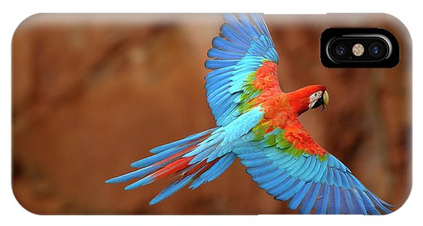 Red And Green Macaw Flying IPhone Case