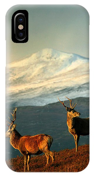 IPhone Case featuring the photograph Red Deer Stags by  Gavin Macrae