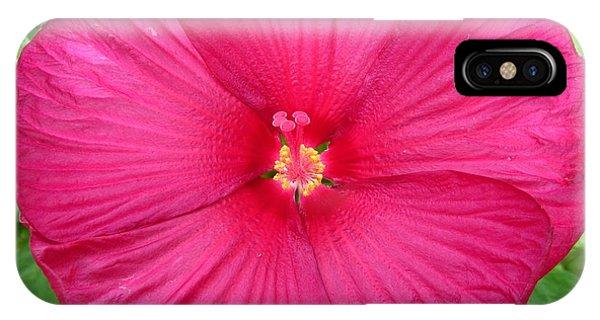 Red Hibiscus Series 2 IPhone Case