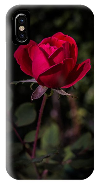 Red Rose Of Love IPhone Case