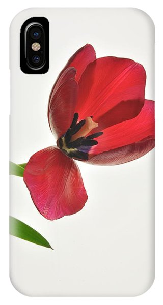 Red Transparent Tulip IPhone Case