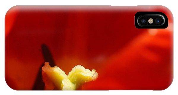 Red Tulip Calyx 3 IPhone Case