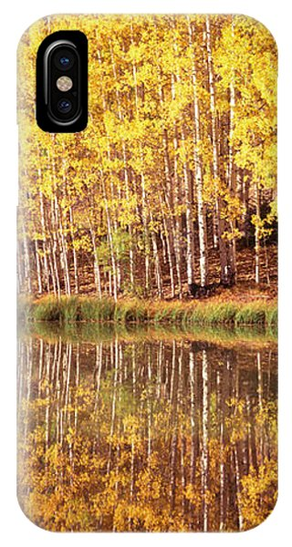 San Miguel iPhone Case - Reflection Of Aspen Trees In A Lake by Panoramic Images