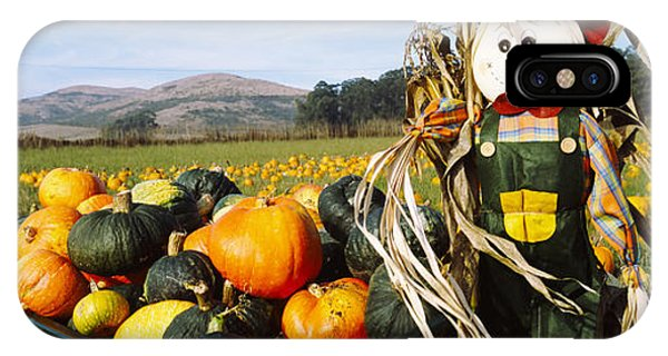 Half Moon Bay iPhone Case - Scarecrow In Pumpkin Patch, Half Moon by Panoramic Images