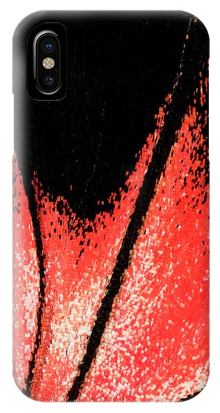 Scarlet iPhone Case - Scarlet Mormon Butterfly by Nigel Downer