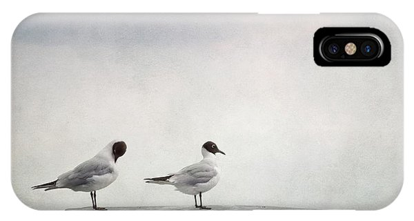 Couple iPhone Case - Seagulls by Priska Wettstein