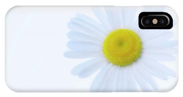 Shasta Daisy (leucanthemum X Superbum) Phone Case by Maria Mosolova/science Photo Library