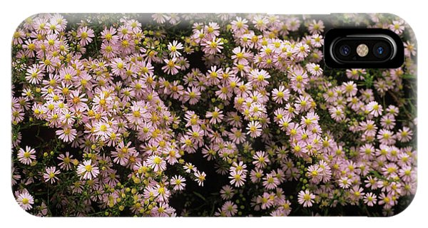 Sky Blue Aster Flowers Phone Case by Anthony Cooper/science Photo Library