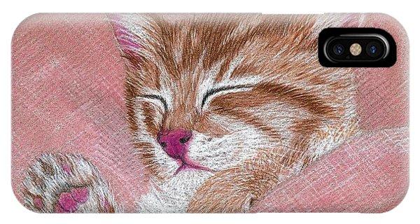 Sleeping Kitty IPhone Case