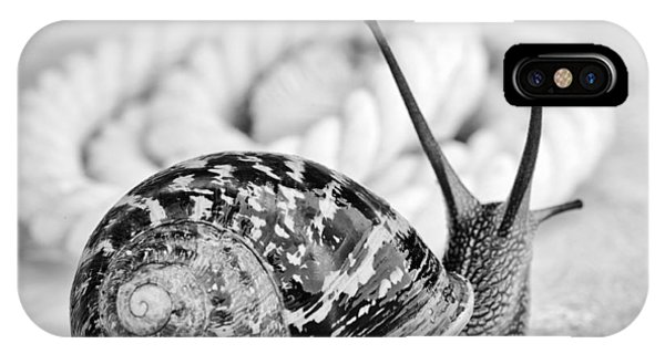 Nice iPhone Case - Snail by Nailia Schwarz