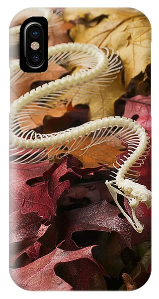 Serpent iPhone Case - Snake Skeleton  by Garry Gay