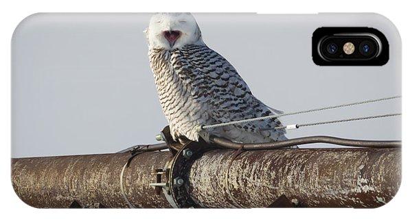 Snowy Owl In Kenosha Phone Case by Ricky L Jones