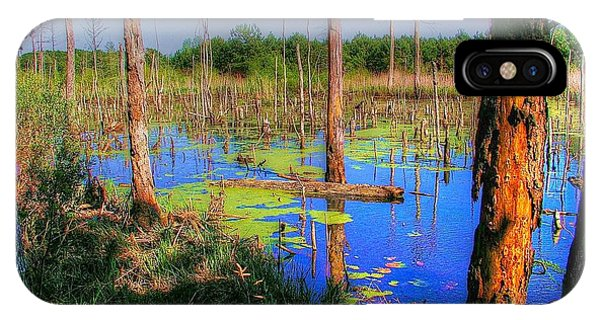 Southern Swamp IPhone Case