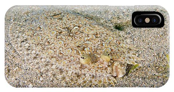 Spiny Flounder Phone Case by Andrew J. Martinez