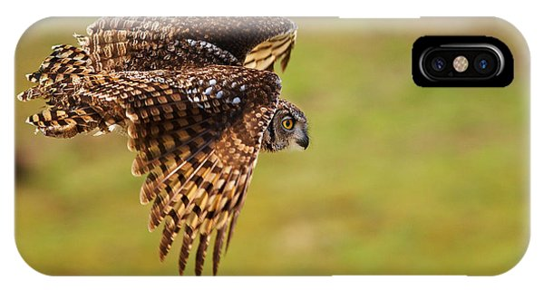 Spotted Eagle Owl In Flight IPhone Case