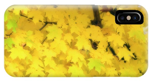 Sugar Maple (acer Saccharum) Phone Case by Maria Mosolova/science Photo Library