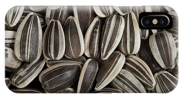 Sunflower Seeds iPhone Case - Sunflower Seeds by Pascal Goetgheluck/science Photo Library