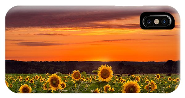 Sunset Over Sunflowers IPhone Case