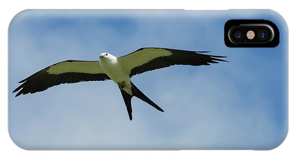 Swallow iPhone Case - Swallow-tailed Kite In Flight by Maresa Pryor