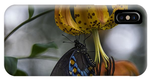 Swallowtail On Turks Cap IPhone Case
