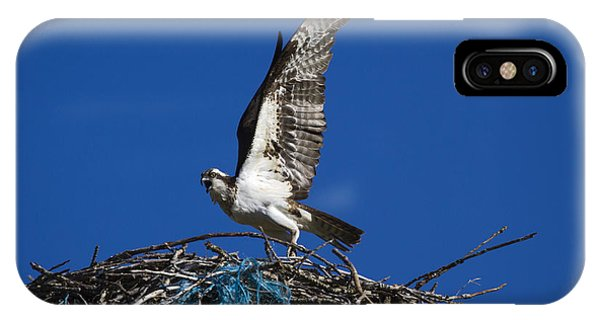 Ospreys iPhone Case - Take-off by Mike  Dawson