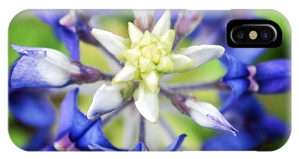 Texas Bluebonnet IPhone Case